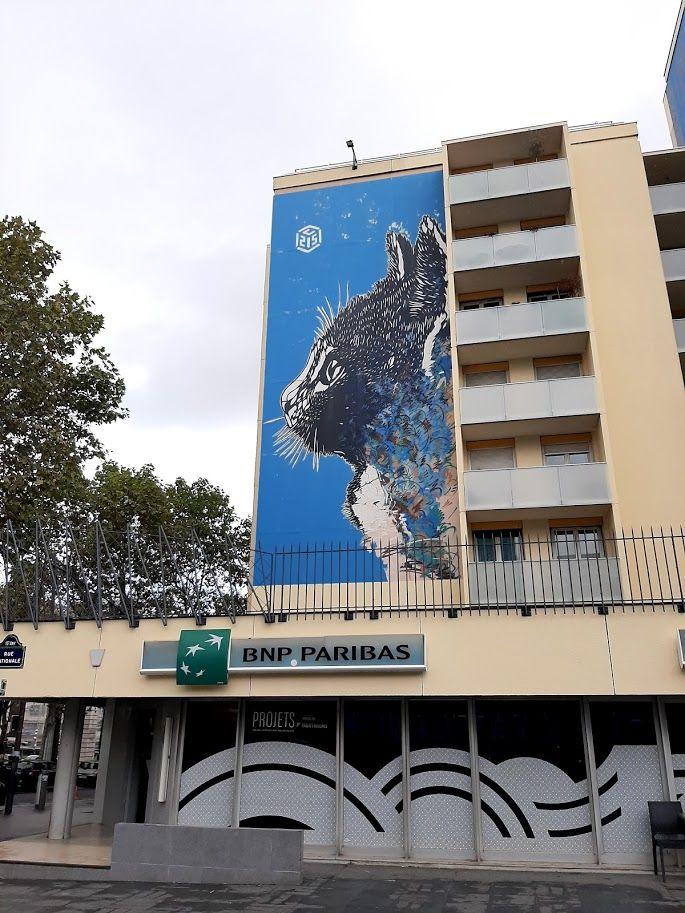 C215-Paris-2013-Cat